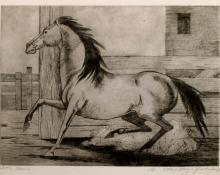 "Ethel Magafan, ""Little Mare, 1/8"", etching, c. 1947"