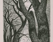"Ethel Magafan, ""Trees"", lithograph, c. 1937"