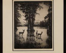 """Hans Kleiber, """"Virgina Deer"""", etching painting fine art for sale purchase buy sell auction consign denver colorado art gallery museum"""