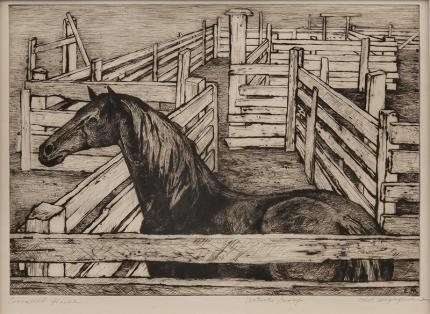 "Ethel Magafan, ""Corralled Horse, Artists Proof"", etching, 1947 art gallery for sale purchase auction"