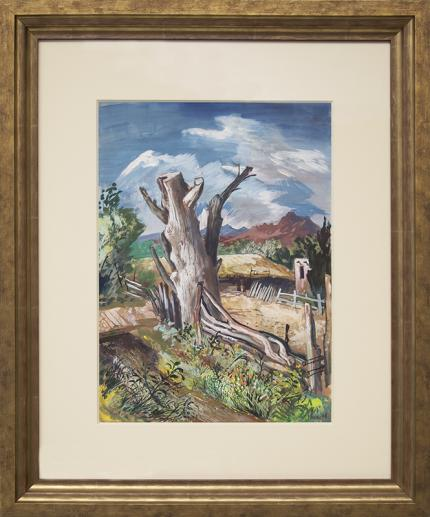 """Fred Shane, Frederick Emanuel Shane, """"Untitled (Old Tree, Colorado)"""", gouache, 1948 painting fine art for sale purchase buy sell auction consign denver colorado art gallery museum"""